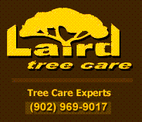 Laird Tree Care
